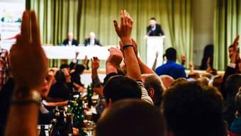 Parteitag: Aargauer SVP sagt Ja zu Ecopop