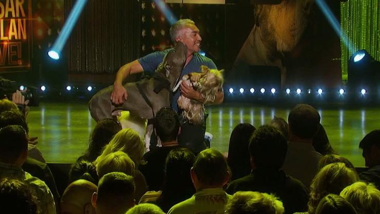 Hundeflüsterer Cesar Millan ist ein Showman. Das Publikum liebt ihn, trotz seiner umstrittenen Auftritte.