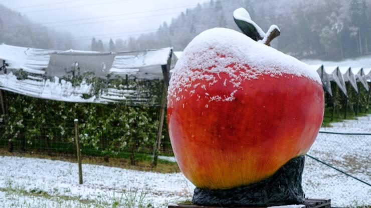Der späte Schnee sorgt jetzt dafür, dass Detailhändler weniger Aktionen anbieten können.