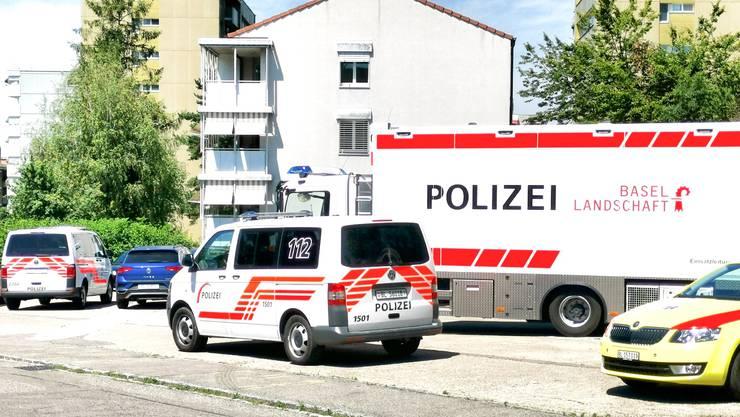 Wegen einem Familienstreit mit Annahme von Gewalt, gab es am Sonntag Nachmittag ein Grossaufgebot von diversen Rettungskräften an der General Guisan-Strasse in Arlesheim.