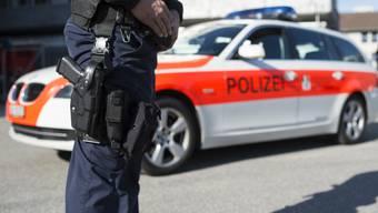 So sehen Beamte und Fahrzeuge der Kantonspolizei Graubünden in Wirklichkeit aus (Symbolbild).