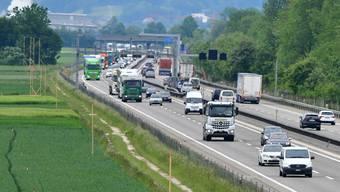 Seit einigen Tagen machen entlang der A1 von Härkingen bis Luterbach aberhunderte von Profilstangen auf den geplanten Dreispur-Ausbau der Autobahn A1 zwischen Härkingen und Luterbach aufmerksam.