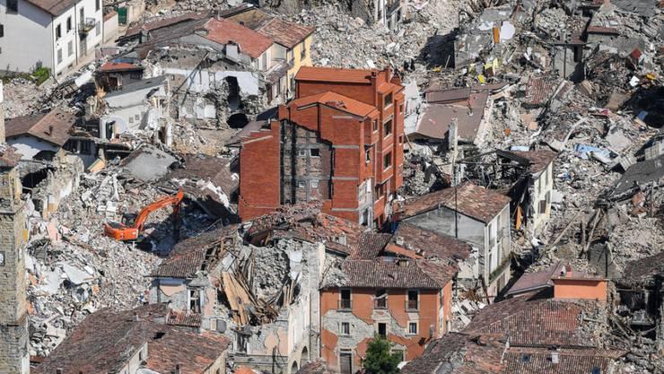 Im weitgehend zerstörten Amatrice rettete die Feuerwehr den Kater Rocco nach 32 Tagen. (Archivbild)