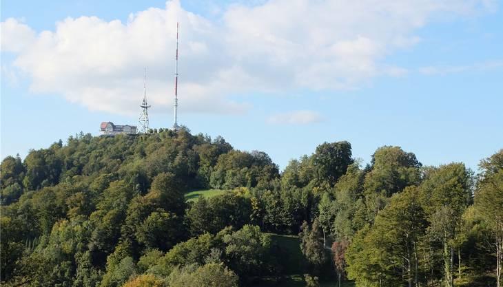 Schutzzone Uetliberg: Landwirtschaft, Wald und Tourismus auf engem Raum.ZVG
