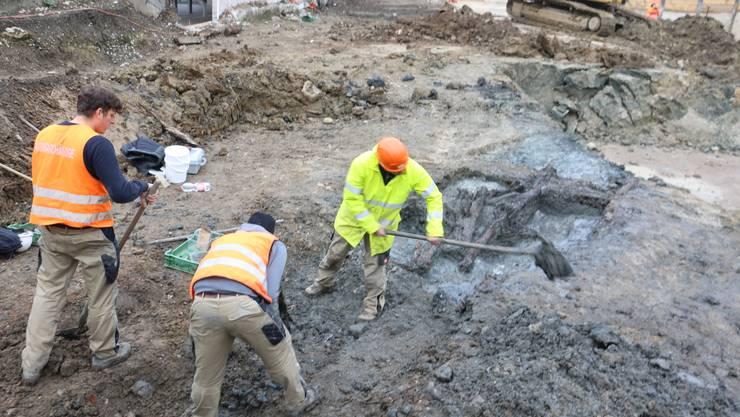 Bei der Freilegung muss ein gutes Auge bewiesen werden, damit die Fundstücke nicht beschädigt werden.