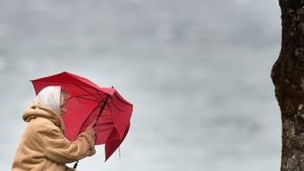 An zahlreichen Orten der Schweiz gab es am frühen Montagmorgen viel Regen und stürmische Winde. (Symbolbild)