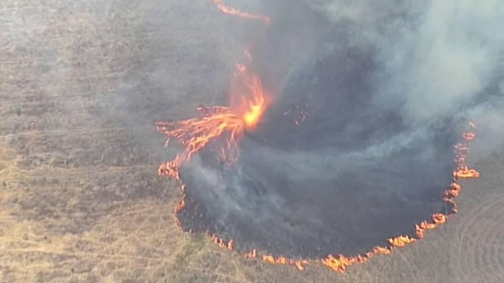 Menschen im Osten Australiens fliehen vor Buschfeuern