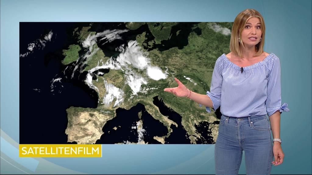 Die Wetterprognosen für die Region
