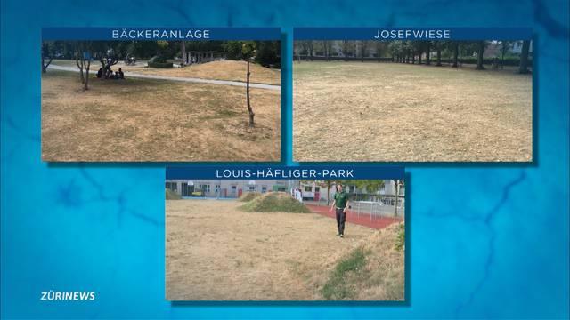 Darum werden Fussballrasen trotz Wasserknappheit weiter bewässert