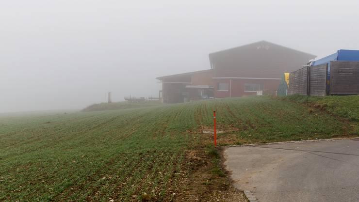 Das Land unterhalt des Werkhofes (rechts) gehört der Gemeinde Günsberg. Zwei Betriebe wollen das Gewerbeland.