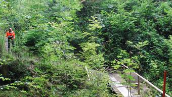 Neue Brücke schwebte am Drahtseil heran