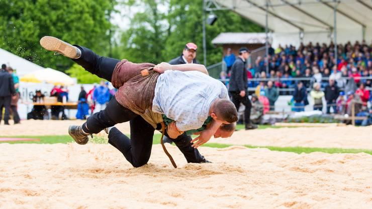 Gisler Bruno (in grün) wirft Orlik Armon ins Sägemehl, am 111. Aargauer Kantonalschwingfest am 7. Mai 2017 im Schachen Brugg. Orlik verletze sich bei dieser Aktion und musste zur Kontrolle ins Spital gebracht werden.