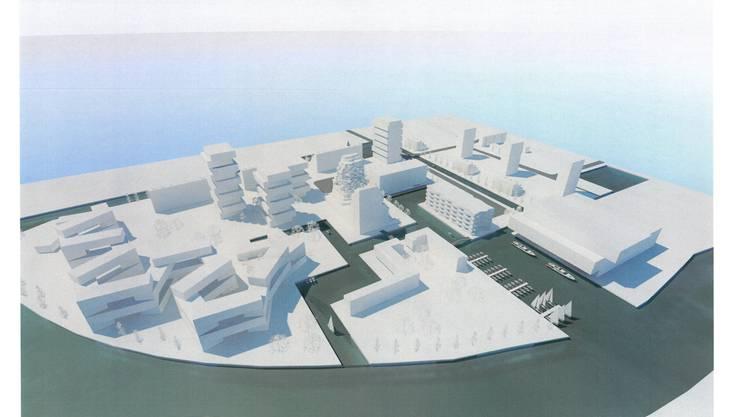 So stellt sich Hans-Jörg Fankhauser den neuen Birsfelder Stadtteil vor: rechts im Vordergrund ein Kulturzentrum, links vom Kleinboothafen der Park und die gemeinnützigen Organisationen. Der Rest ist Wohnen und stilles Gewerbe.