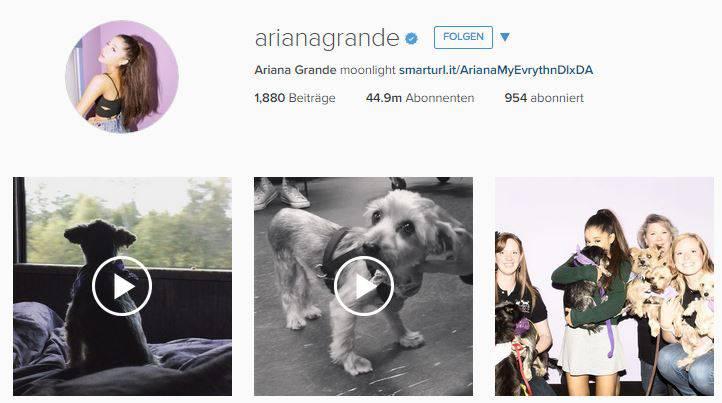 Schlusslicht: Ariana Gomez. Traurig sein muss sie trotzdem nicht. Mehr als 44 Millionen Abonnenten begleiten sie.