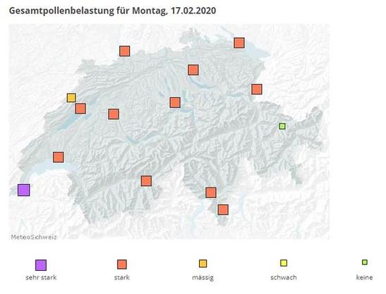 An vielen Messstationen ist die Pollenbelastung bereits stark (rot).
