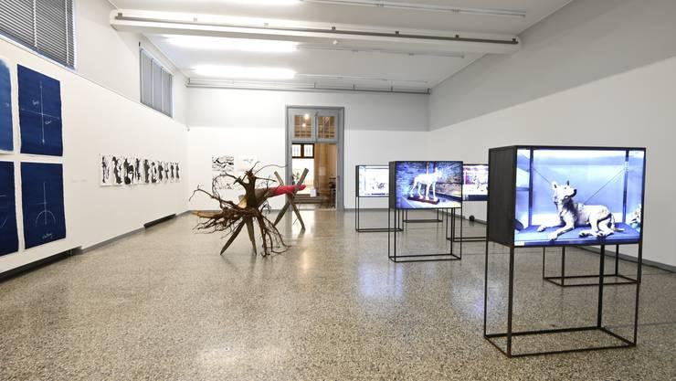 Blick in die 36. Jahresausstellung im Kunstmuseum Solothurn