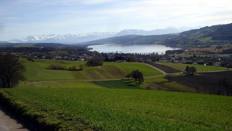 Blick vom Eichberg über den «Lebensraum Lenzburg-Seetal». Der Standort soll in Zukunft stärker gefördert werden.