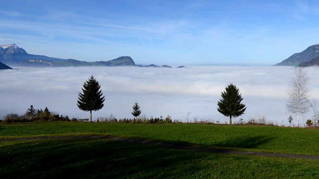 Unten kalt, oben sonnig: Nebel - wie hier über dem Vierwaldstättersee - beschert den tiefen Lagen Temperaturen um den Gefrierpunkt. (Archivbild)