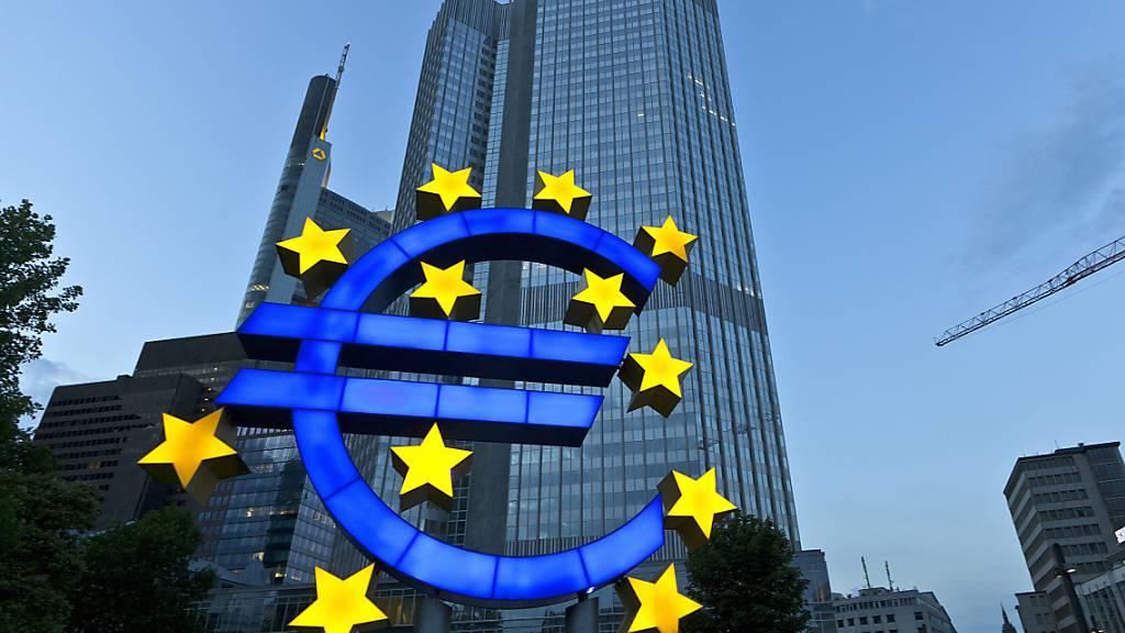 Die deutsche Regierung soll den massiven Staatsanleihenkäufen der Europäischen Zentralbank (EZB) entgegentreten. (Archivbild)