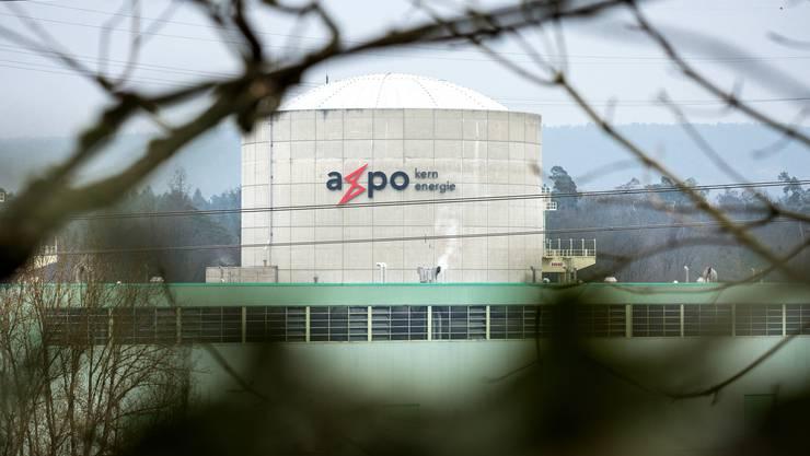 Die Axpo besitzt und betreibt unter anderem das Kernkraftwerk Beznau. Der Konzern investiert aber vermehrt in die Stromproduktion durch erneuerbare Energieträger wie Wind und Sonne.