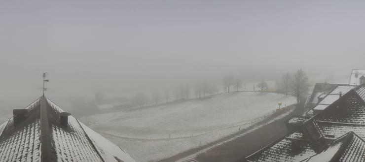 Ein «Flüümli» auf dem Weissenstein: Heute Morgen präsentierte sich der Hausberg mit dem erstem Schneekleid dieser Saison.