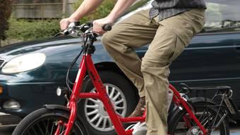Energetischer Rundgang: Mit einem E-Bike sind die Basler Energy-Tours leichter zu bewältigen.