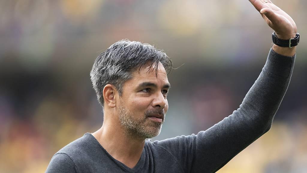 Trainer David Wagner wird für seinen Mut gelobt