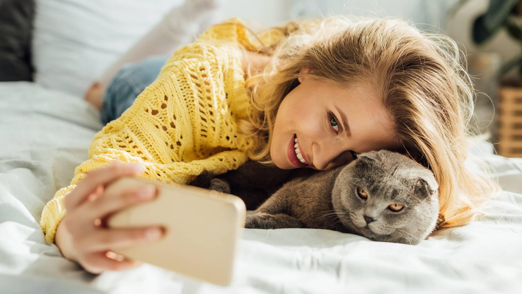 Die neue Dating-App zielt auf Katzenfreunde ab. (Symbolbild)