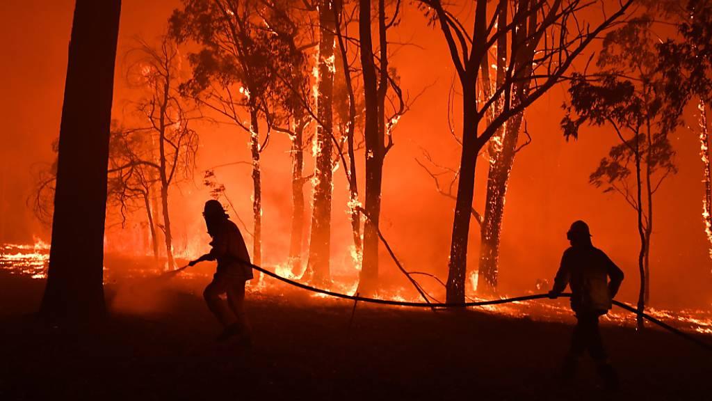 Buschbrände: Schlimmer Verdacht gegen Feuerwehrmann