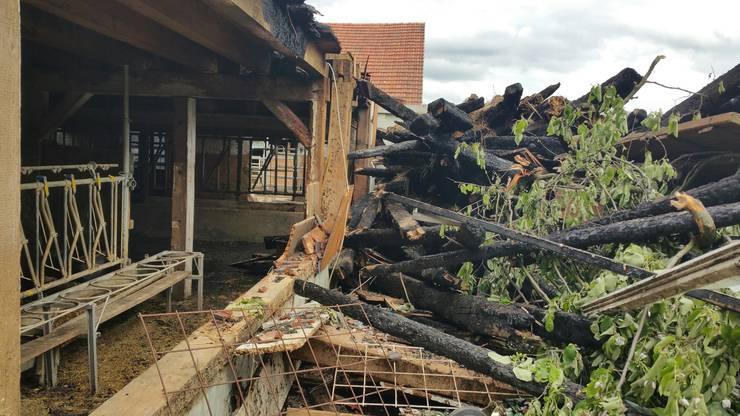 Der Besitzer des Neuhofs erlitt schwere Verbrennungen und musste mit einem Helikopter ins Spital gebracht werden.