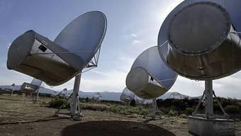 Seti-Teleskope in Nordkalifornien (Archiv)