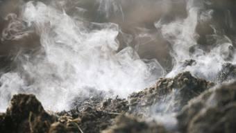 Noch viel zu wenig organische Abfälle landen in Kompostier-, Biogas- oder Vergärungsanlagen (Archiv).