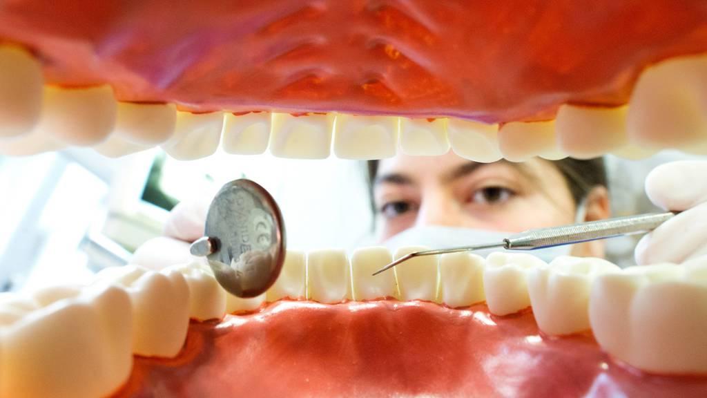 Den Zahnärzten auf den Zahn gefühlt