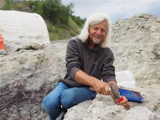 Mit Hammer und Ahle befreit Grabungsleiter Ben Pabst einen Beinknochen des Plateosauriers von den Erdresten. twe