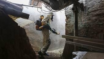 Ein Gesundheitsmitarbeiter versprüht im Kampf gegen das Dengue-Virus Chemikalien in der brasilianischen Metropole Sao Paulo. (Archivbild)