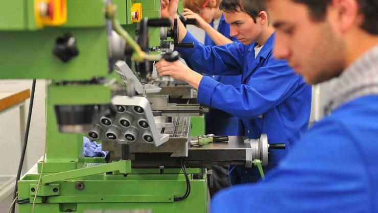 Unternehmen gewähren einen halbstündigen Einblick in den Betrieb, vermitteln Informationen zur Ausbildung sowie das Arbeitsumfeld mit Werkzeugen, Materialien und Mitarbeitern.