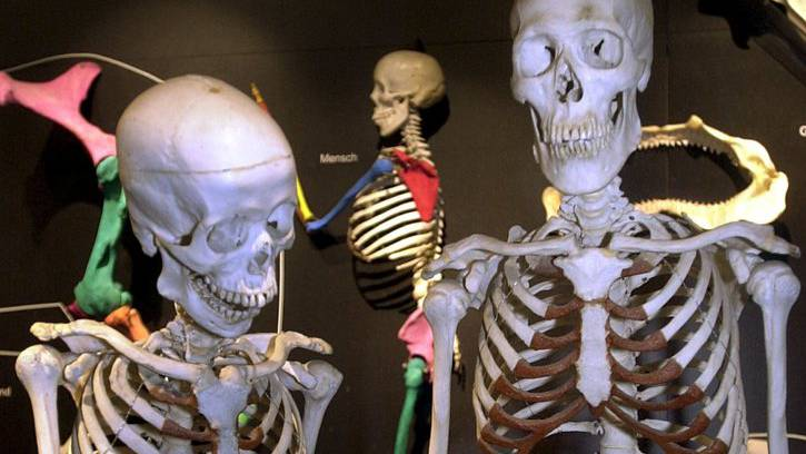 Das Zürcher Museum Kulturama gehört zu den von Schulen am meisten genutzten Museen der Schweiz.