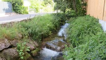Der Erusbach in Villmergen führt noch Wasser – hier entlang der Bachstrasse im Dorf.