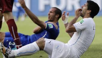 Beisser Suarez verspürte nach dem Sturz auf Chiellini starke Schmerzen an den Zähnen