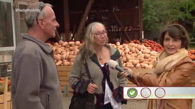 Quizzenswert vom Erlebnisbauernhof Jucker Farm