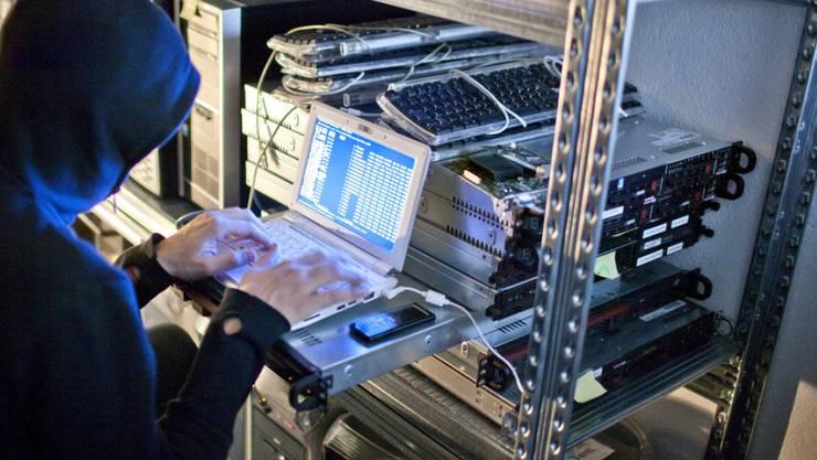 Der verurteilte Cyber-Terrorist unterhielt eine eigene Internet-Bibliothek mit einem Datenstock von acht Terabyte. (Symbolbild)