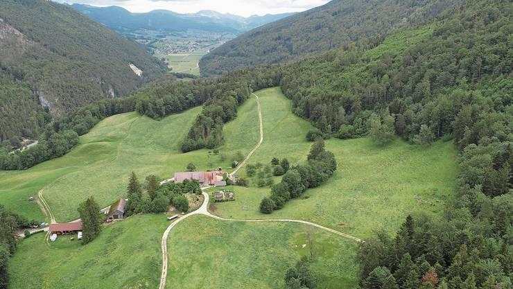 Die Sollmatt mit Sicht nach Osten. Etwa auf halbem Weg vom Hof entfernt Richtung Wald beginnt die Einzäunung.