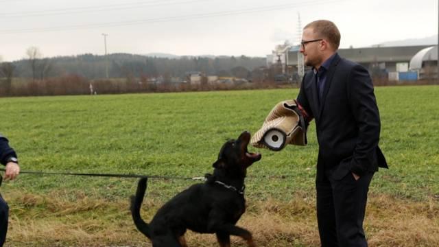 Diensthund in Ausbildung: Rottweiler Gysmo beisst jetzt schon kräftig zu.
