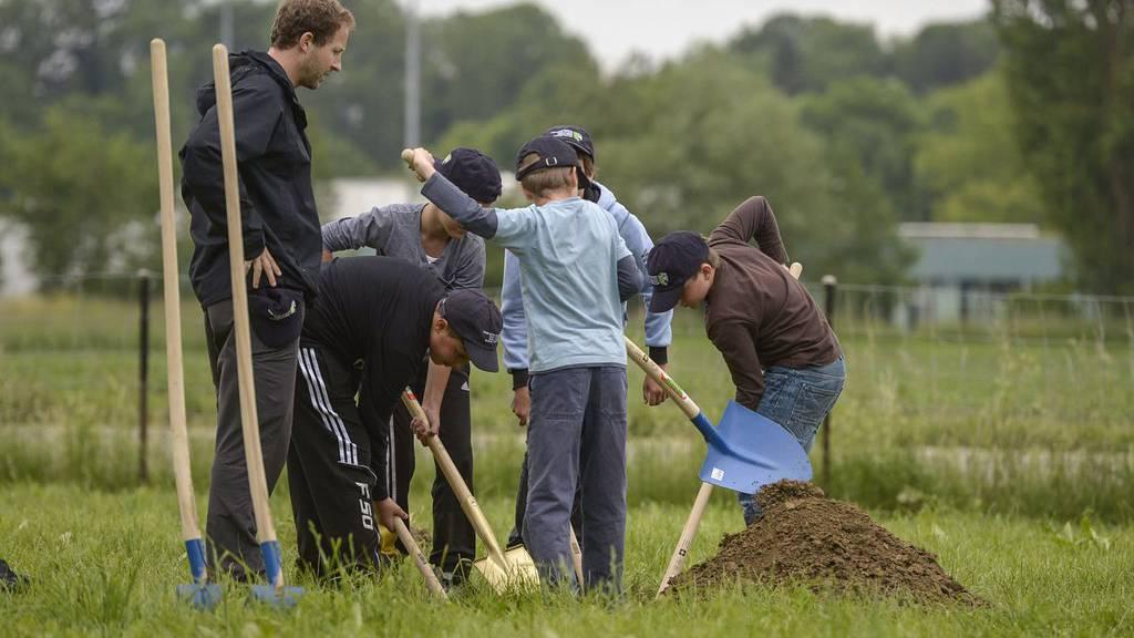 Unter Anleitung eines Erwachsenen setzen Fünftklässler Jungbäume. (Symbolbild)