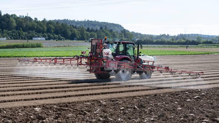 Die Grünen unterstützen die Pestizid- sowie die Trinkwasserinitiative und wollen eine ökologischere Landwirtschaft. (Symbolbild)