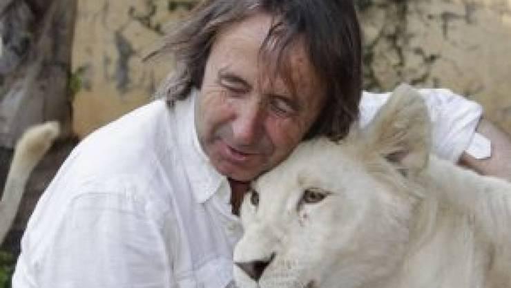Zoogründer und -direktor Juan Luis Malpartida tröstet die weisse Löwin, die im März nach zwei Wochen Wehen das erste weisse in Spanien geborene Löwenjunge geboren hatte.  Das Muttertier hat nach der traumatischen Niederkunft ihr Junges verstossen (Pressebild)