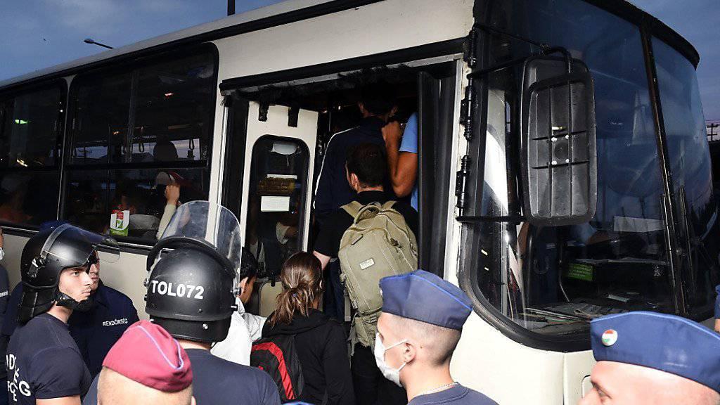 Flüchtlinge in Ungarn: Busse sollen sie an die österreichsiche Grenze bringen.
