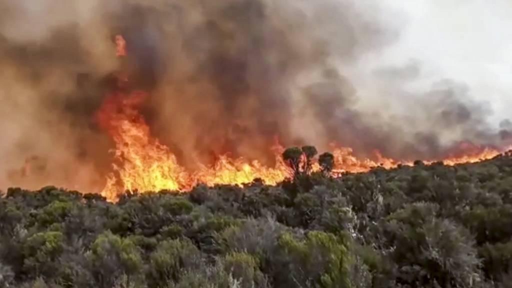 Der Kilimandscharo steht noch immer in Flammen
