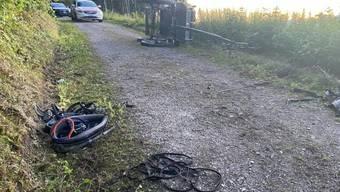 Die von vier Pferden gezogene Kutsche kippte auf einem Waldweg in Brittnau AG um. Passagiere wurden aus ihren Sitzen geschleudert.