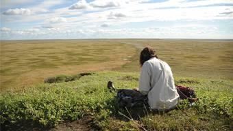 Forschen in der sibirischen Einsamkeit: Unter kargen Bedingungen versuchen Umweltwissenschafter der Uni Zürich zu verstehen, wie der Klimawandel die Tundra verändert.Gabriela Schaepman-Strub